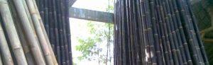 hama bambu