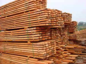 kayu-akasia-vietnam