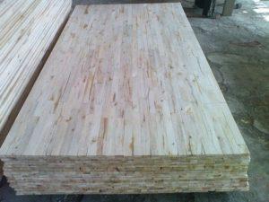 kayu-albasia