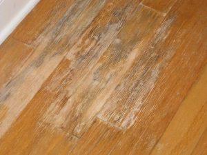 lantai-kayu-berjamur