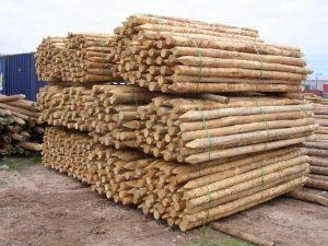 manfaat pengawetan bambu