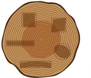 tingkat kembang susut kayu